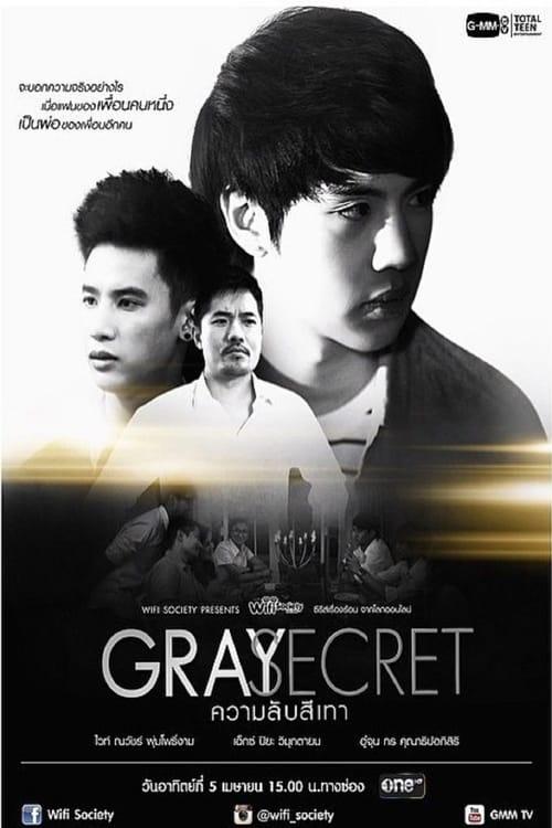 Wifi Society Gray Secret