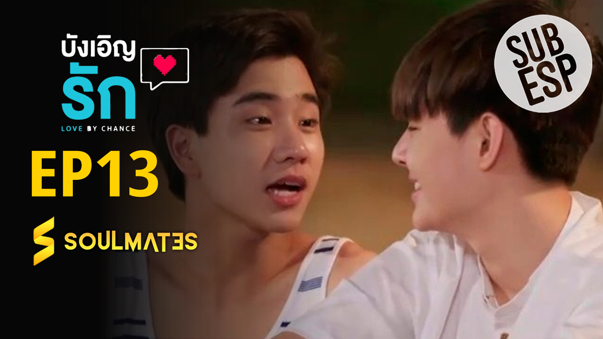 LOVE BY CHANCE 1×13