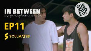 In between: T1-E11