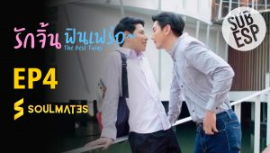 THE BEST TWINS 1X4