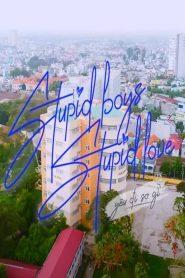 Stupid Boys Love