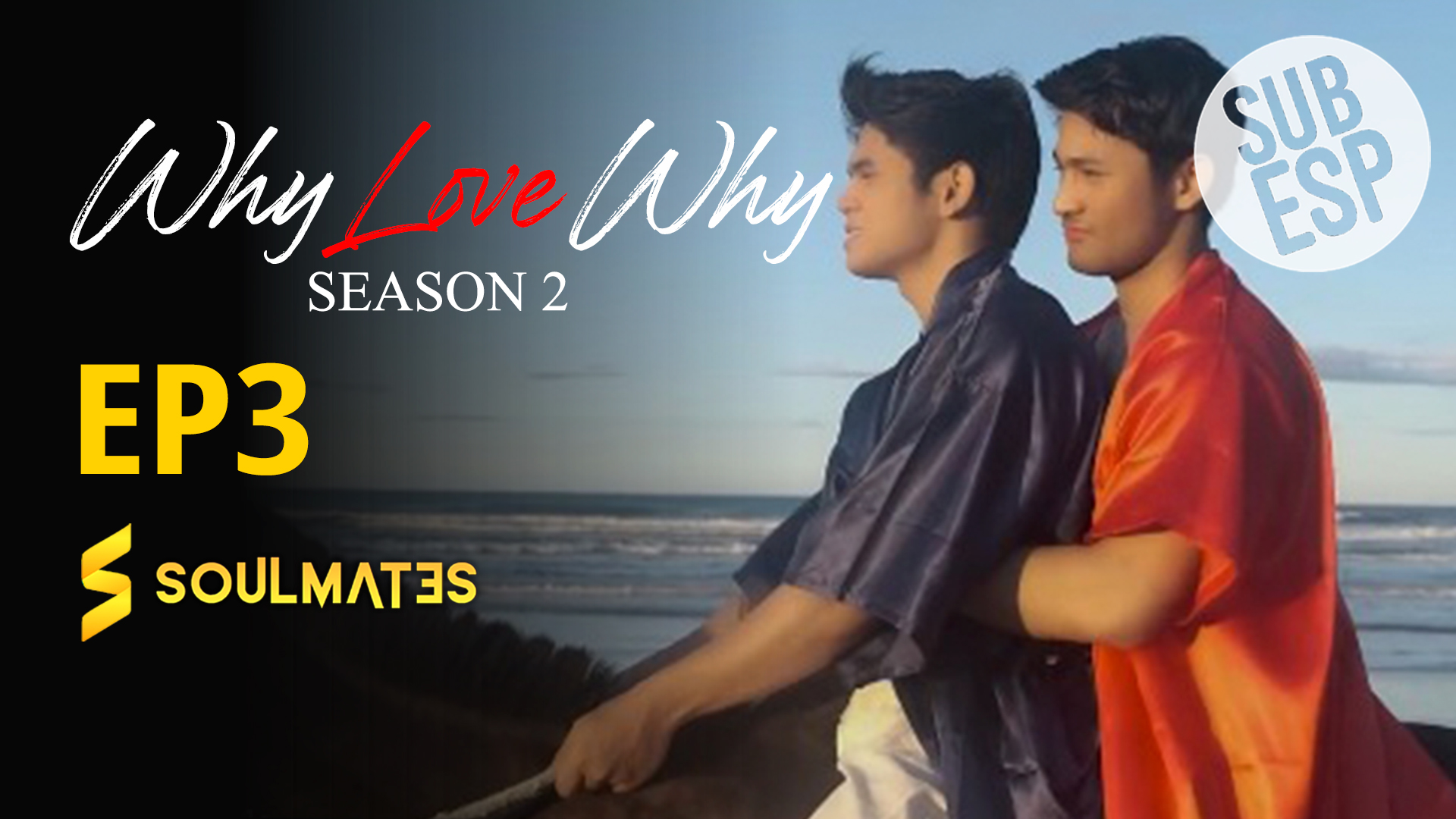 Why Love Why The Series: 2×3