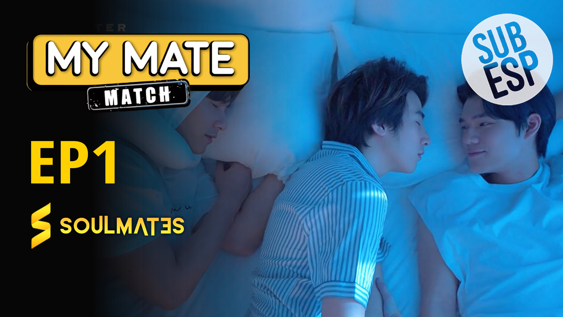 My Mate Match: T1-E1